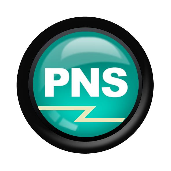 Professional Network Services